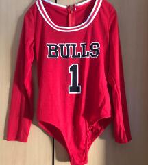 Bulls body