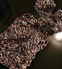 Leopard oblekica 🐆