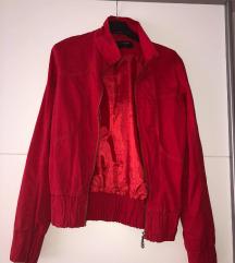 Rdeča jaknica