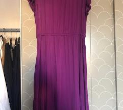 Viola oblekica