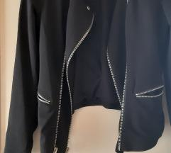 Črna jaknica