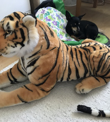 Igrača Tiger