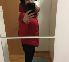 Rdeča bunda Zara št. 36