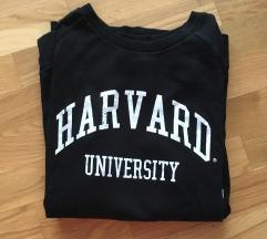 Pulover Harvard