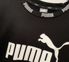 Puma oblekica