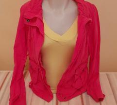 Roza prehodna jaknica-kot nova