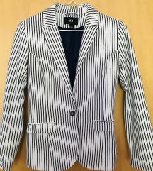Elegantna jaknica