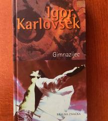 Roman Gimnazijec (Igor Karlovšek)