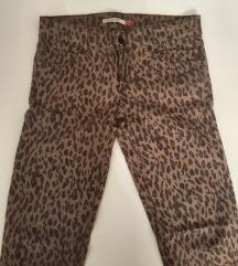 Tigraste hlače