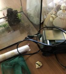Manjši akvarij z vso opremo