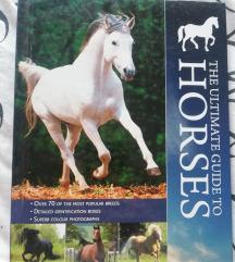 Knjiga horses