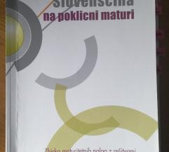Slovenščina na poklicni maturi