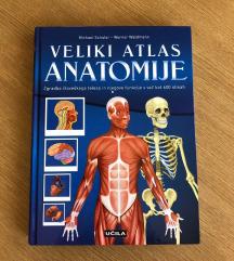 Veliki atlas anatomije :)