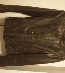 Mustang nova jakna usnjena